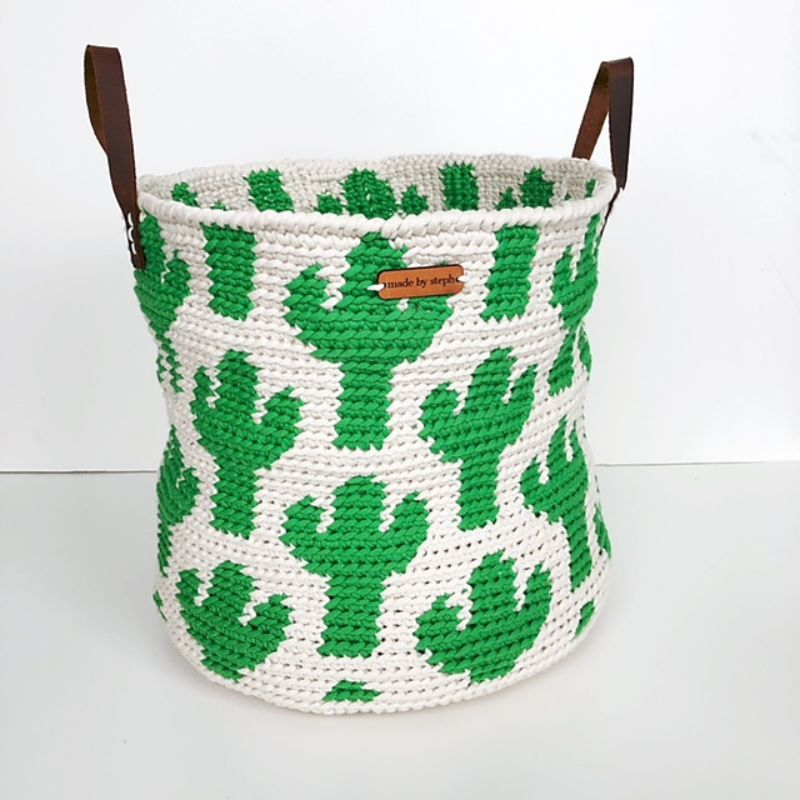 Cactus Basket by Steph Lewis