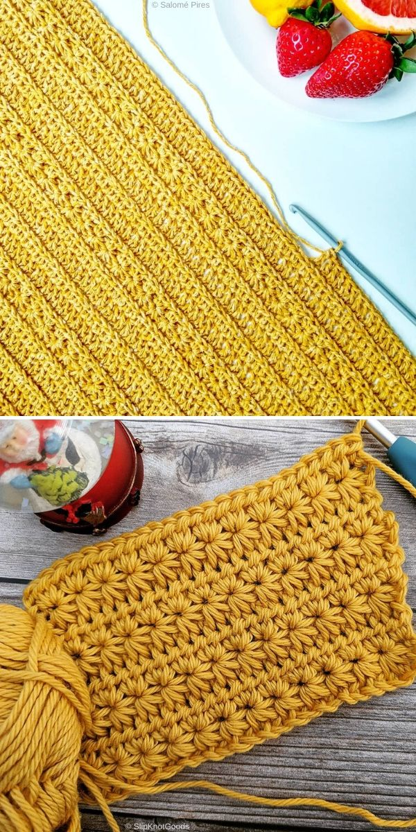 Golden Star Stitch by Salomé Pires and Slip Knot Goods